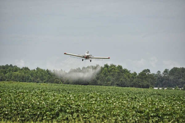 Křemelina proti pesticidům